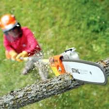 Powered Pole Pruner Course