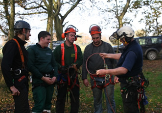 Aerial Cutting of Trees using Freefall Techniques Course