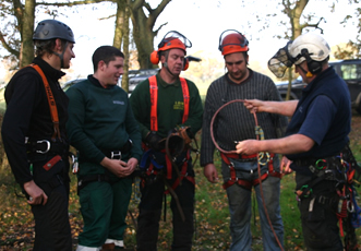 Tree Climbing, Aerial Rescue & Felling Using Freefall Techniques Course