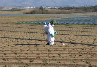 Safe Use of Pesticides (PA1) and Hand Held Applicators (PA6) – Refresher Course